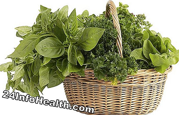 Wellness: Malurt: Herbal Remedies