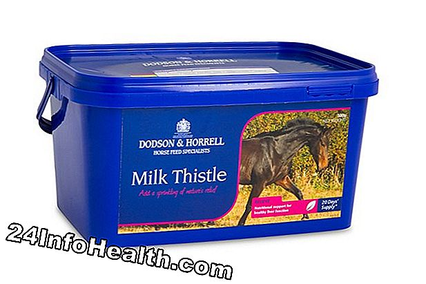 Milk Thistle: Herbal Remedies